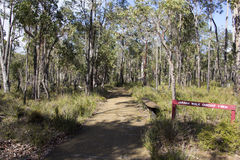 Walk path at Crooked Brook Western Australia in winter. stock photo