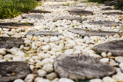 Walk path in garden decorated with stumps and stone Royalty Free Stock Images