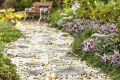 Walk path in garden decorated with stumps and stone. To art bench Royalty Free Stock Photo