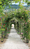 Walk path with rose flowers Royalty Free Stock Photos