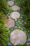 Walk path with stepping stones and vegetation, garden landscape Royalty Free Stock Image