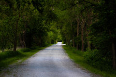 Walk the path. On this summer evening, With a slight breeze and the beauty of mother nature all around Stock Photo