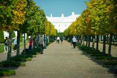 Walk of Peterhof Stock Image
