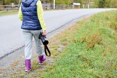 Walk photographer. Cold autumn. Gray asphalt. Green grass. Blue and purple Stock Images
