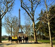 Walk on ponies to the Tour Eiffel. Royalty Free Stock Images