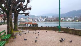 Lakeside promenade of Gmunden, Austria stock video footage