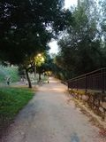 Walk of the river. In the afternoon with green trees royalty free stock photos