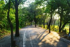 Walk route for exercise in the rodfai park, Bangkok,  Thailand Stock Photo