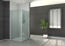 Walk-in shower. Concept collections stock illustration