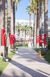 Walk on site with the flags of Turkey on the palms Royalty Free Stock Images