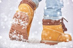 Walk in the snow Stock Images