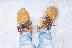 Walk in the snow Royalty Free Stock Photos