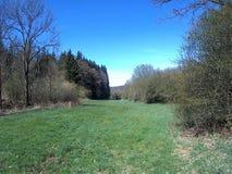 Countryside. Walk through the spring landscape stock photos