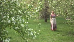Walk in the spring park. A young woman in a folk dress and without shoes is walking near a flowering tree stock footage