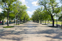 Walk street around Sanam Luang Royalty Free Stock Image