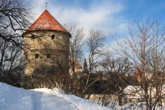 Walk in Tallinn. Tallinn, Estonia. View of a tower - Kiek in de Kok Stock Photo