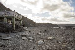 Walk to cliffs at low tide, Joggins Fossil Cliffs, Nova Scotia,. Wooden stairs leading to tidal plane at low tide in Bay of Fundy at World Heritage SIte Joggins royalty free stock photos