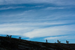 Walk to the top. Workers and tourist at Ijen crater, East Java, Indonesia Vector Illustration