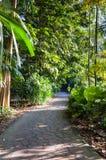Walk trail leading to garden Royalty Free Stock Photo