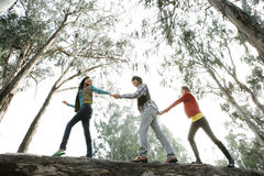 Walk on a tree trunk. Three young people walking on a tree trunk in a forest Stock Photo