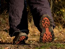 Walk in trekking shoes on the background of leaves and trees. royalty free stock photo