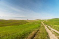 A walk in the Tuscany nature. A quick walk in the beautiful Val d'Orcia in a sunny day Royalty Free Stock Photo