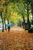 A walk under umbrella Royalty Free Stock Photos