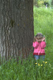 WALK V. A child having a walk in a forest or park Stock Images