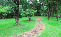 Walk way. In the garden Stock Photo