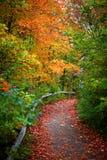 Walk way Royalty Free Stock Image