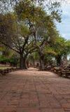 Walk way. Ancient walk way in history park at Ayutthaya ,Thailand Royalty Free Stock Image