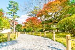 walk way in autumn park Stock Photos