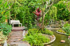 Walk way in the beautiful garden Stock Photos