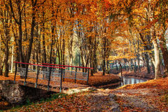Walk way bridge over river with colorful trees in autumn time Stock Image