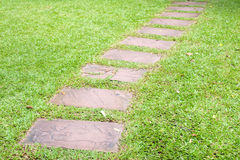 Walk way in garden Royalty Free Stock Image