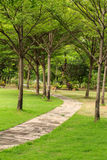 Walk way in the garden Royalty Free Stock Images