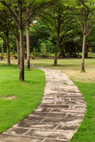 Walk way in the garden Stock Photography