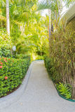 Walk way in garden leading to entrance door Royalty Free Stock Photography
