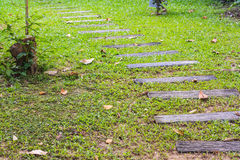 Walk way in garden Royalty Free Stock Photography