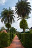 Walk way in garden Royalty Free Stock Photography