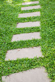 Walk way on grass Royalty Free Stock Photography