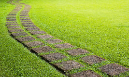 Walk way in greeen field. During sunny day Stock Image