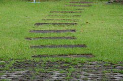 Walk way on green grass turf Royalty Free Stock Photos