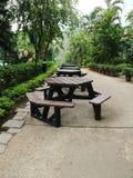 Walk way with green trees Royalty Free Stock Photo