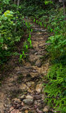 Walk way hill upright eastern Thailand Royalty Free Stock Image