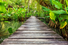 Walk way at house river side Stock Photography