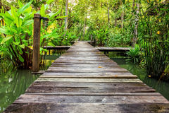 Walk way at house river side Royalty Free Stock Images
