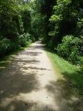 Walk this way. Nature walk way Royalty Free Stock Photos