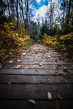 Walk this way. One of the trails in Rawdon, Quebec, Canada royalty free stock photo
