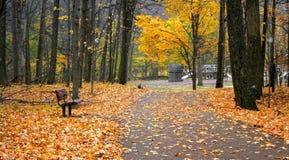 Walk Way In A Park Royalty Free Stock Photos